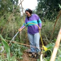 Can Masdeun puutarhat ovat avoinna kaikille
