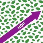HDP nousi Turkin parlamenttiin – riittääkö se muutokseen?