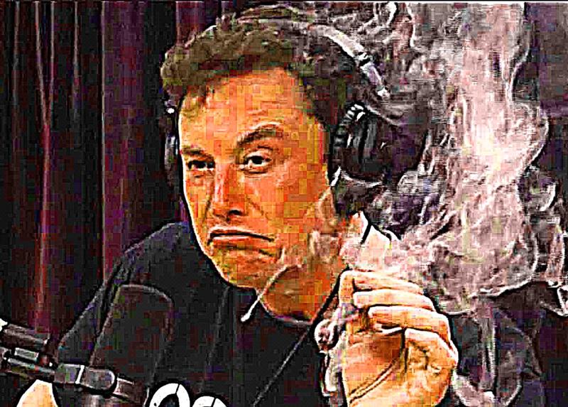 Elon Musk pajauttaa